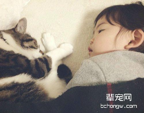和猫咪一起睡好吗
