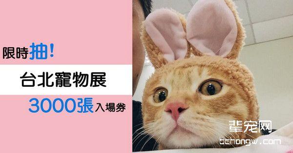 限时抽3000张台北宠物展入场券 奴才快去买朕的罐罐
